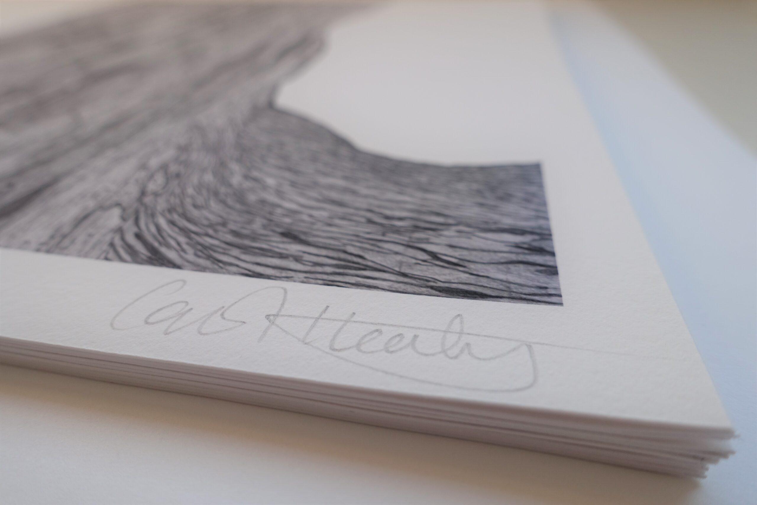 Carol Healy Solastalgia print detail signature-Nua-Collective
