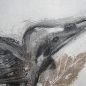 Gillian-Cussen-Bird-Nua-Collective
