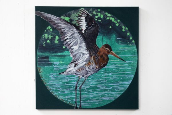 Katrina-Tracuma-Black-tailed-godwit-acrylic-ink-and-oil-on-canvas-60cm-by-60cm-Nua-Collective