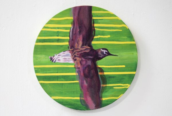 Nua Collective - Artist - Katrina Tracuma - Green sandpiper, acrylic, ink and oil on canvas, 30cm in diameter, 2019
