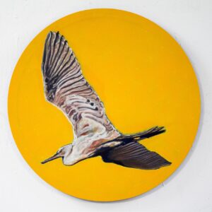 Nua Collective - Artist - Katrina Tracuma - Little egret, acrylic, ink, and oil on canvas, 61cm in diameter, 2019