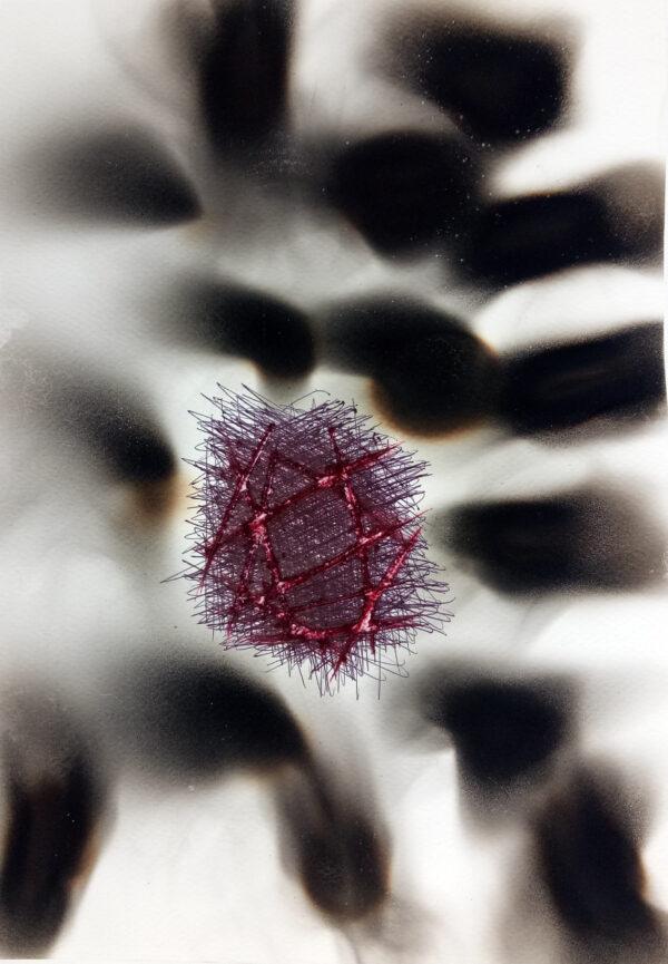 Polluscapes - Varun Baggi - Nua Collective - Artist