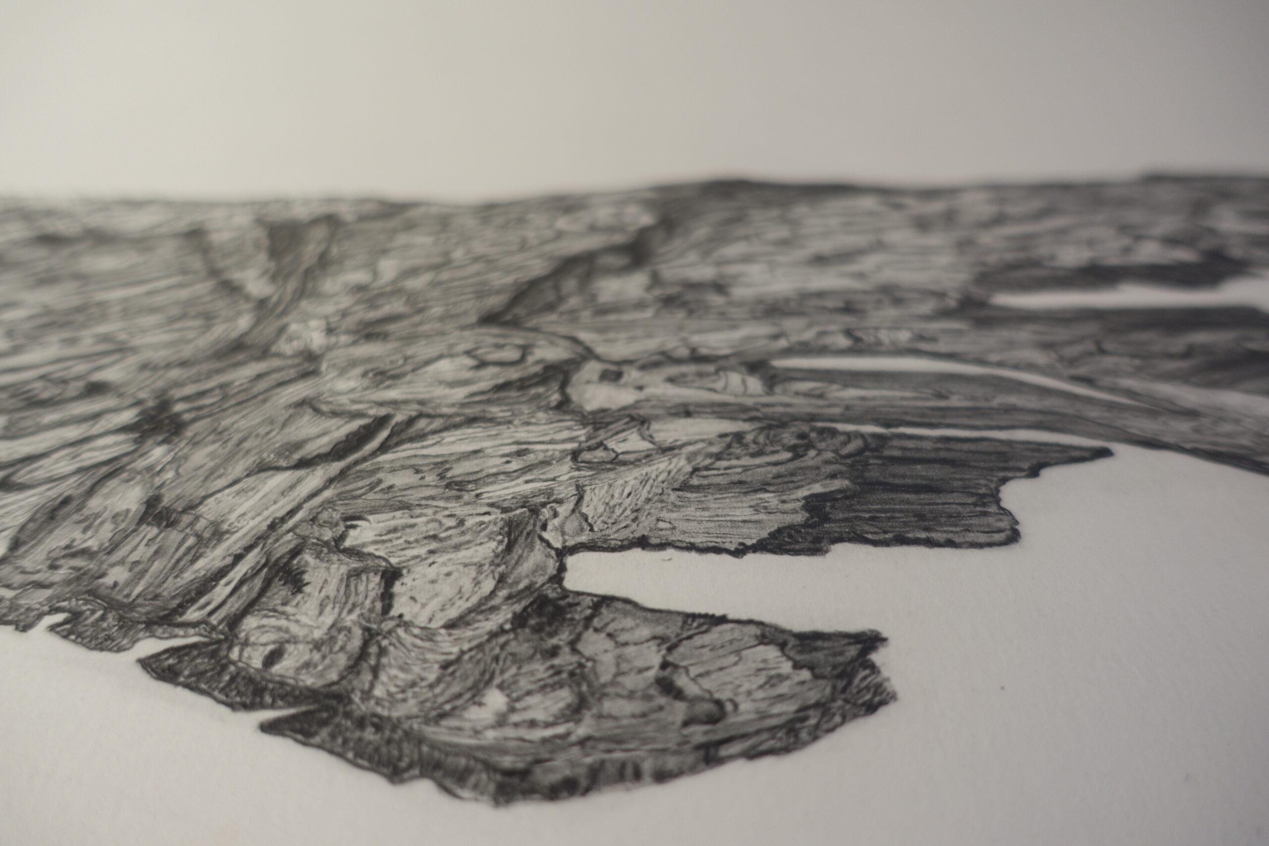 Soliphillia I - Carol Healy - Nua Collective - Artist
