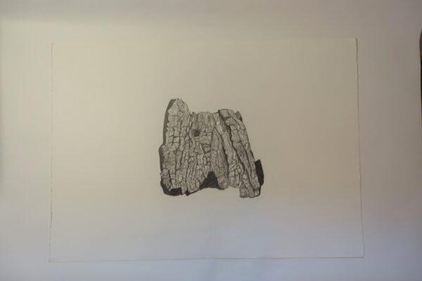 Soliphillia II - Carol Healy - Nua Collective - Artist